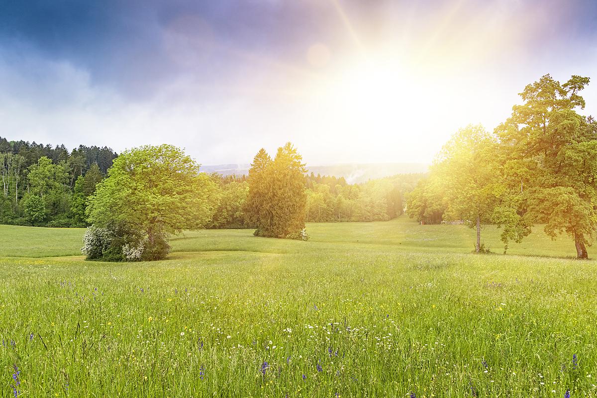 Logez Landschaftsbilder Hallau Sonne